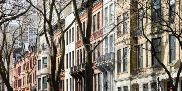 Welcome to the (Concrete) Jungle:  Navigating the NYC Real Estate Market